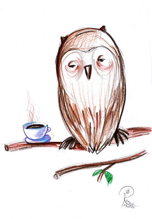 funny owl drawing - photo #35